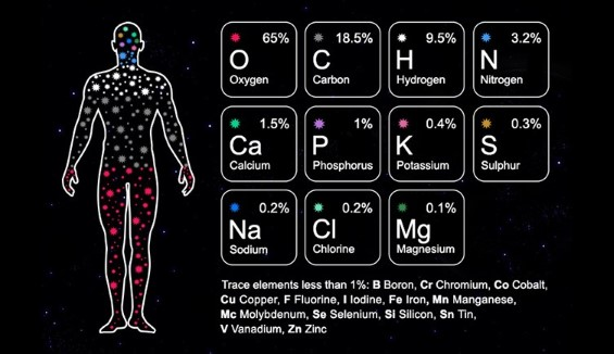 We geloven niet in het kille wereldbeeld van de wetenschap (wat we geloven 1)